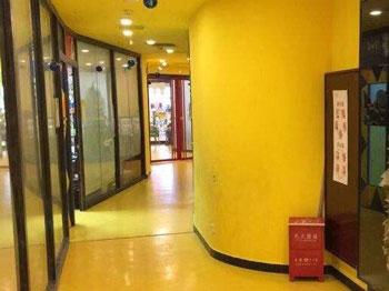 杨梅红艺术教育加盟品牌有上升空间吗
